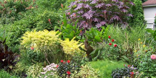 What Is a Cottage Garden and Should You Grow One